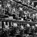 Zone de stockage transmissions
